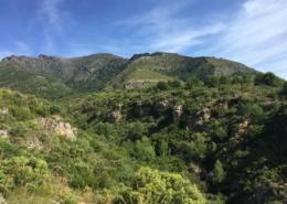 Conocer el entorno de Alozaina - Foto 5